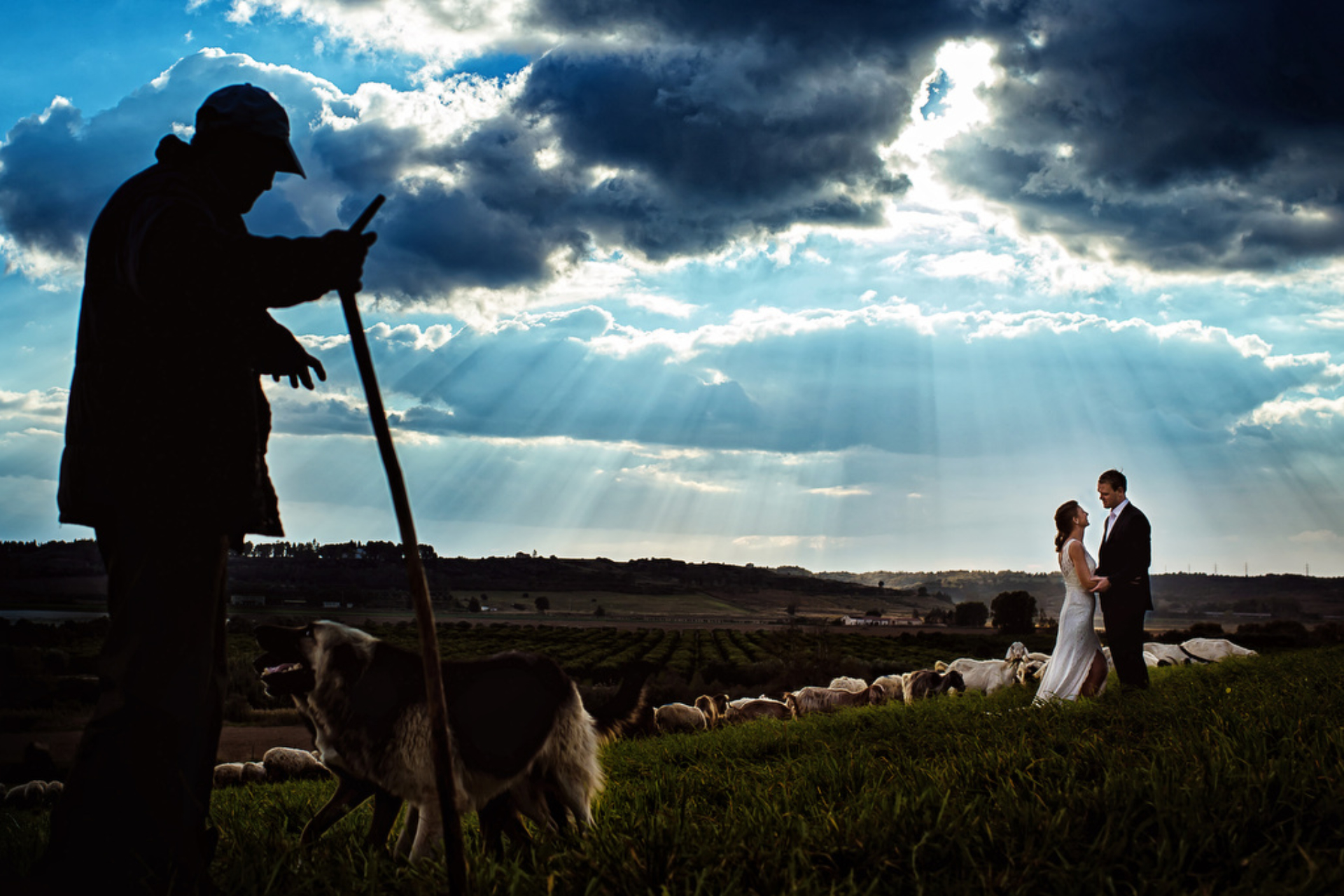 wedding-puglia-italy 00001